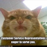 Meowy Inspirational Service