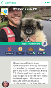 A Tail Waggin Customer Experience Customerthink