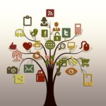 Surveying the Omnichannel Landscape